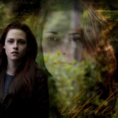Twilight – Breaking Dawn by Bella